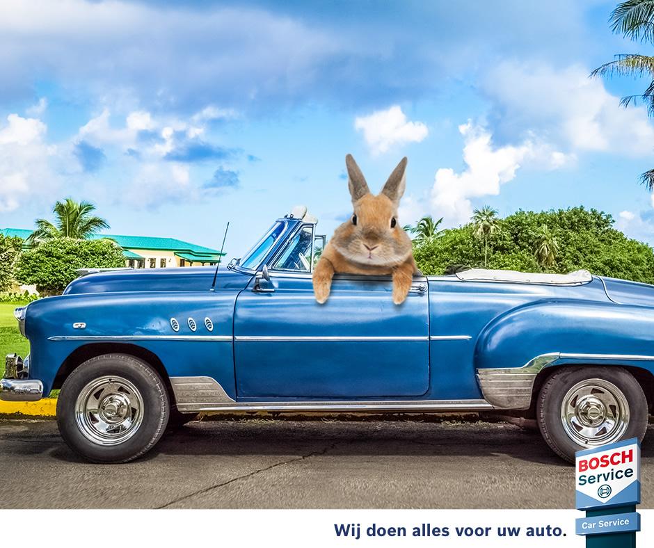 ga naar de Bosch Car Service website